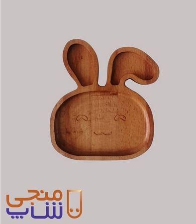 تصویر بشقاب خرگوشZ101